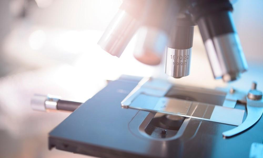 Has it just got easier for small companies to claim the R&D Credit?